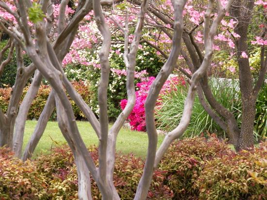 Turner Garden