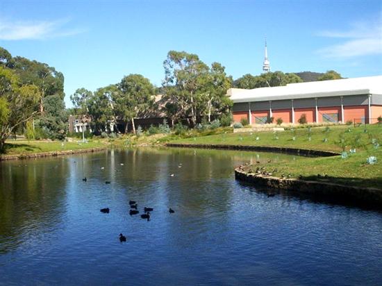 Sullivans Creek in the ANU