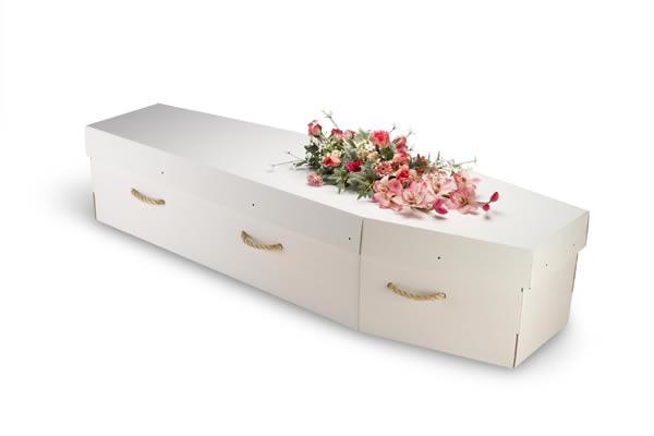 cardboard-coffin