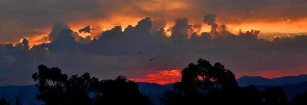 ode-sunset-mark