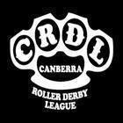 roller-derby-logo
