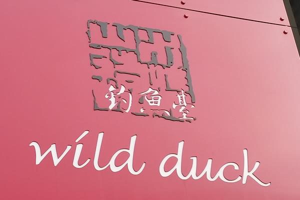 wild-duck-a