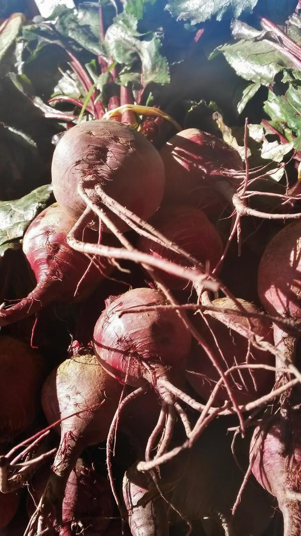 beetroot-farmers-market
