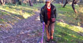 Terrific Tuggers walk   8211  dog and kid friendly