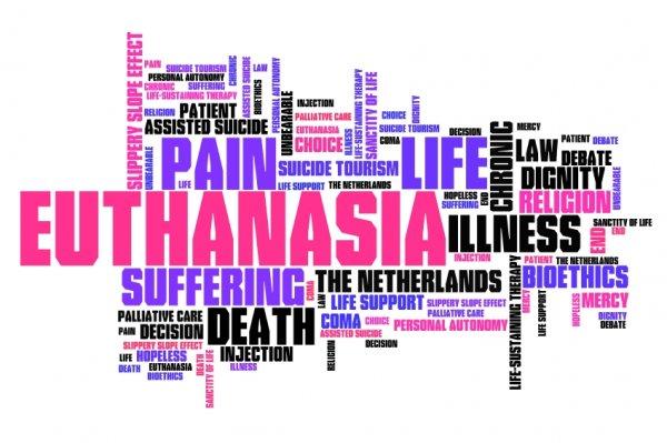 euthanasia-stock-150914