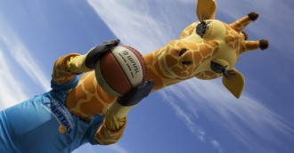 University of Canberra Capitals spot their new mascot