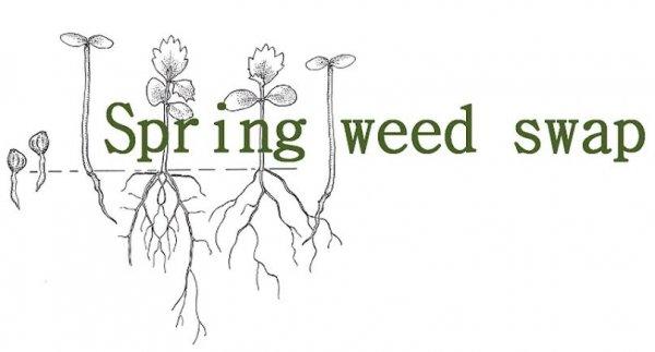 spring-weed-swap
