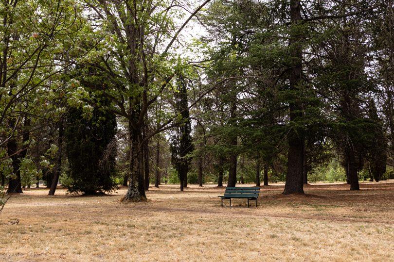 Haig Park
