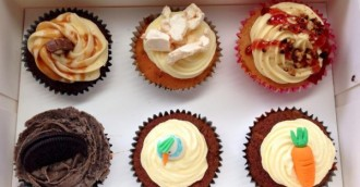 Could these be the best vegan and paleo cupcakes in Canberra?
