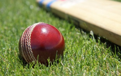 The Cricket Calls  A poem for Minister Yvette Berry
