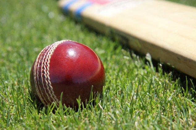 cricket-stock-241214