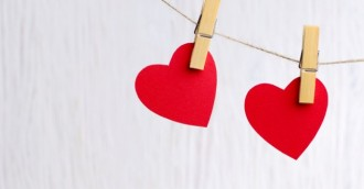Looking for love online? Here is how to protect your heart and wallet this Valentine  8217 s Day
