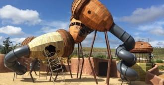 Playground review   8211  Pod Playground  National Arboretum