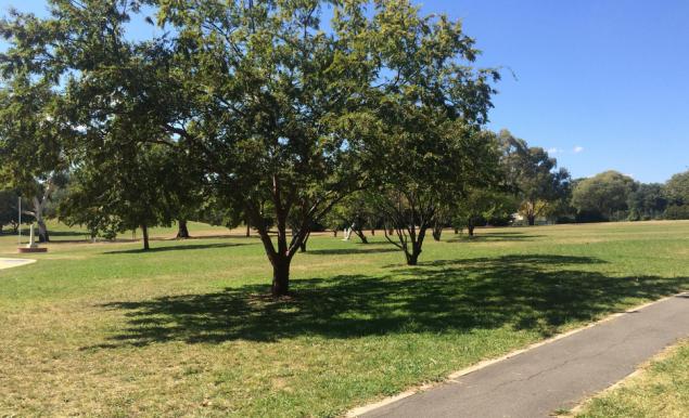 eddison park canberra