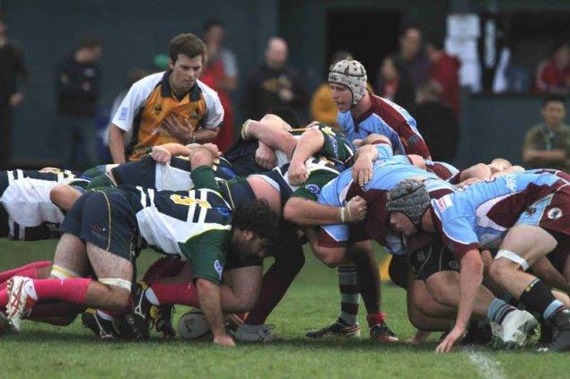 uni-norths owls rugby