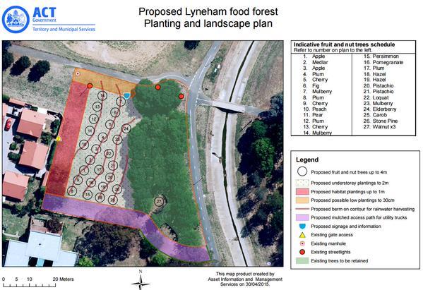 lyneham food forest