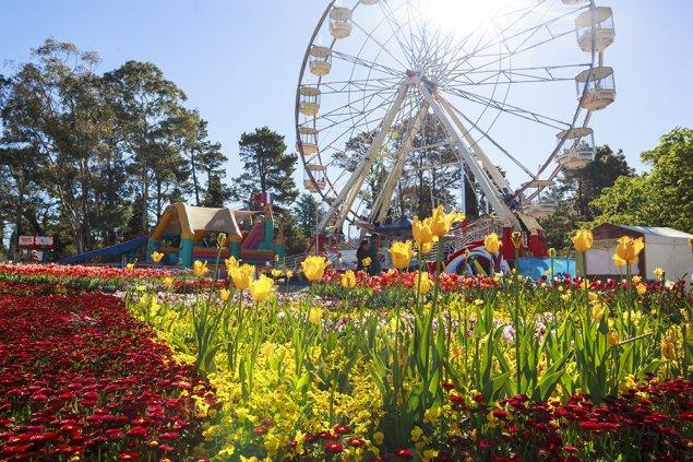 Floriade: Canberra's flower festival.