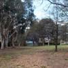 Parklands-P1070332