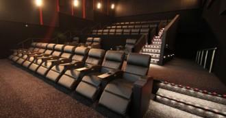 Cinema in a Netflix World