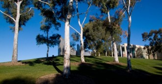 Canberra Tales: Branding and the Parliamentary Gardens