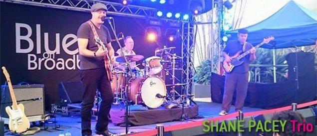 shane-pacey-trio
