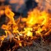 grass fire generic
