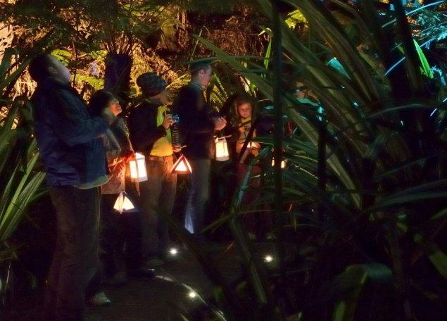 After dark lanterns