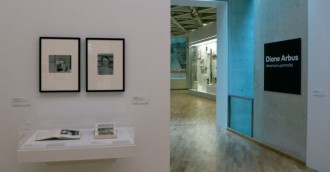 NGA-Diane Arbus and more