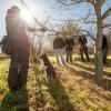 truffle hunt 3