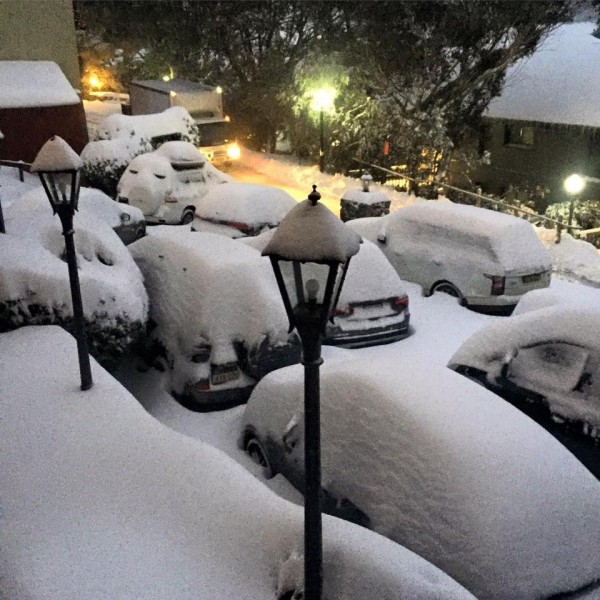 Cars snowed in at Thredbo. Photo: Belinda Wight