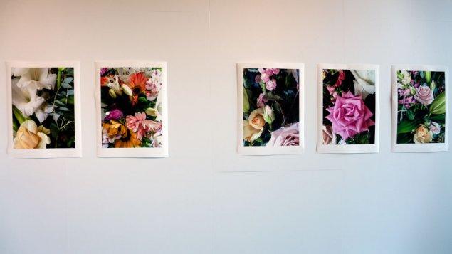 flowers-P1190441