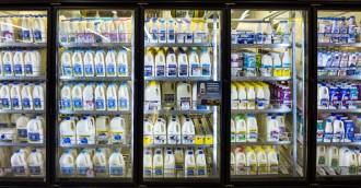 The shopper  the farmer   cheap milk