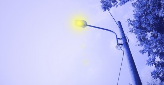 ACT street lights on in the middle of the day