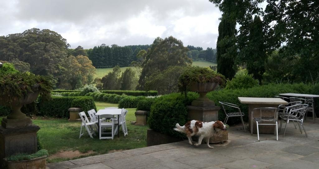 burrawang-village-pub-garden