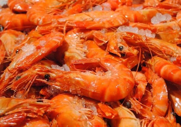 fisco-prawns-edited