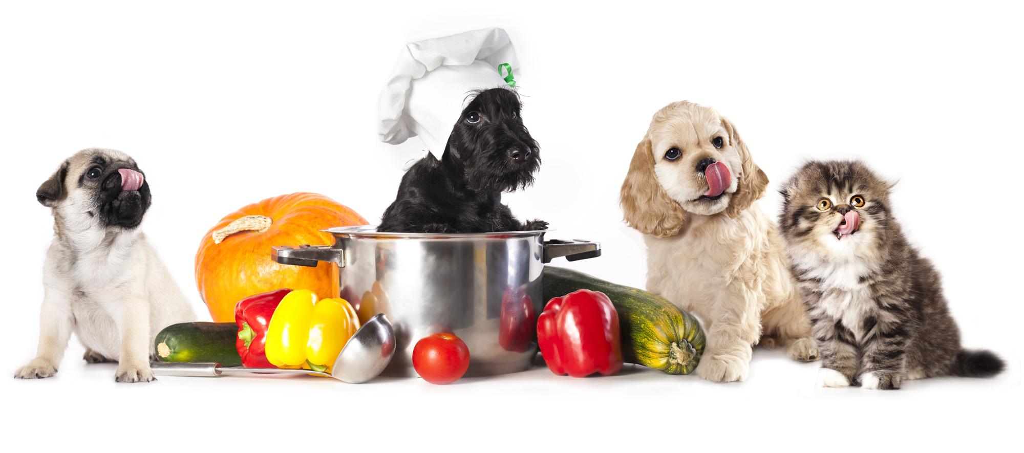Natural Pet Food Canberra