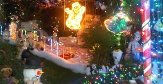 My Christmas  Rachel Ziv