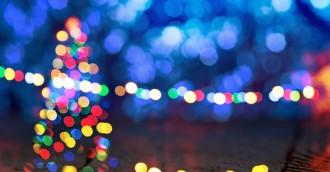 Christmas celebrations to light up Glebe Park