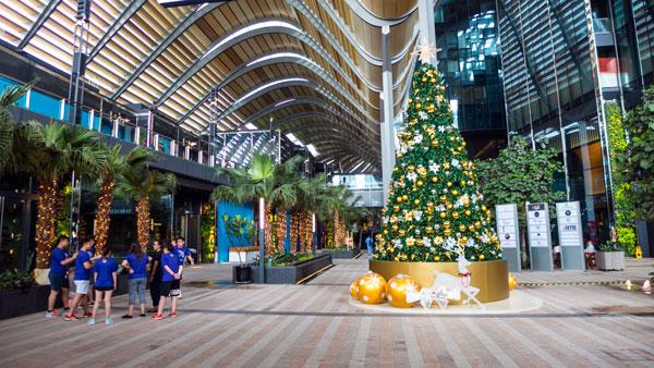 singapore-xmas-p1220152