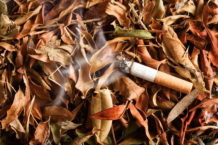 Cigarette butt. Photo: iStock