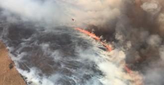 Entire region in extreme fire danger as blaze near Tarago roars on