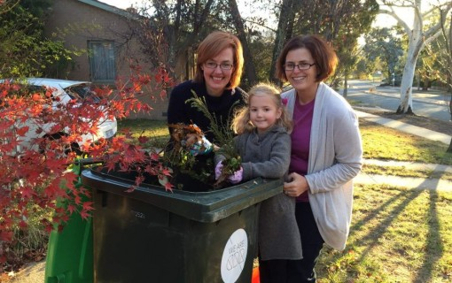 First green bins arrive in Kambah  Weston Creek with pick-up from April