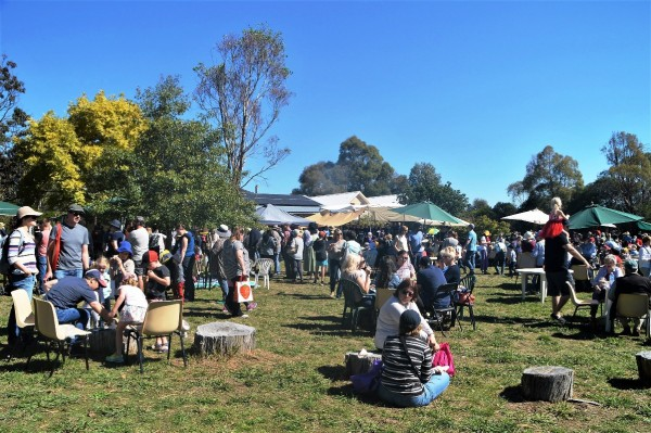 The large crowd at Apple Day