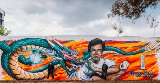 Ask RiotACT  New cultural mural by DSEE   Peque VRS