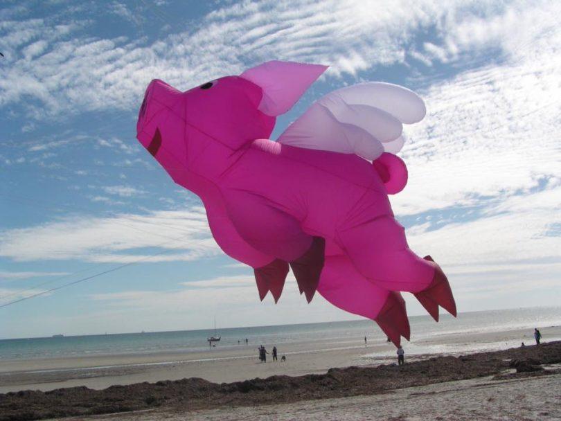 Ian Burrell's Supersized kite