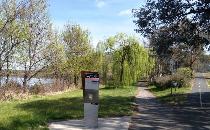 The path along the side of the Lake is well-marked and it is possible walkers might see Bogong moths and frill-necked lizards.