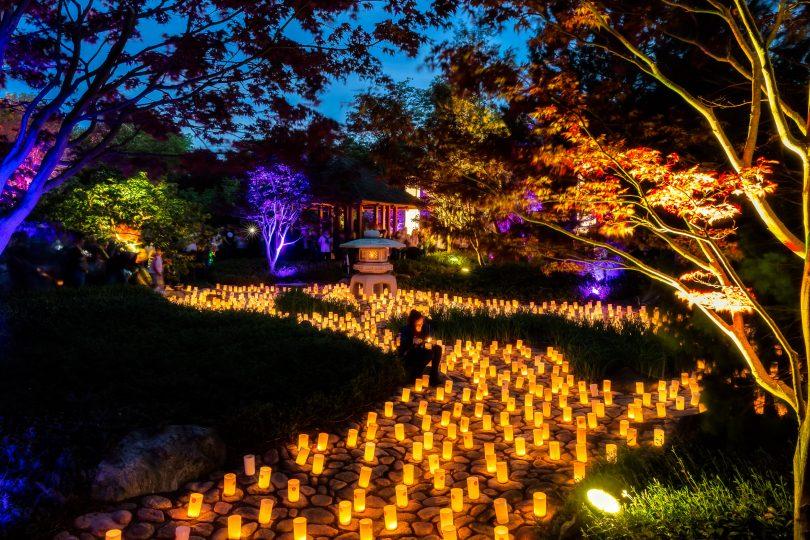 Canberra Nara Candle Festiva