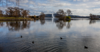 Lake Burley Griffin remains closed as algae levels remain high