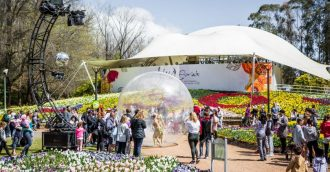 Floriade 2017 rakes in big numbers and high ratings compared to last year