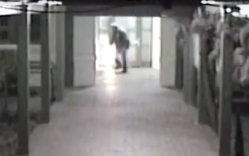 Caught on camera: Firebug strikes again while police and firemen still in Braddon building